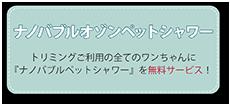 トリミングご利用の全てのワンちゃんに『ナノバブルオゾンペットシャワー』を無料サービス!